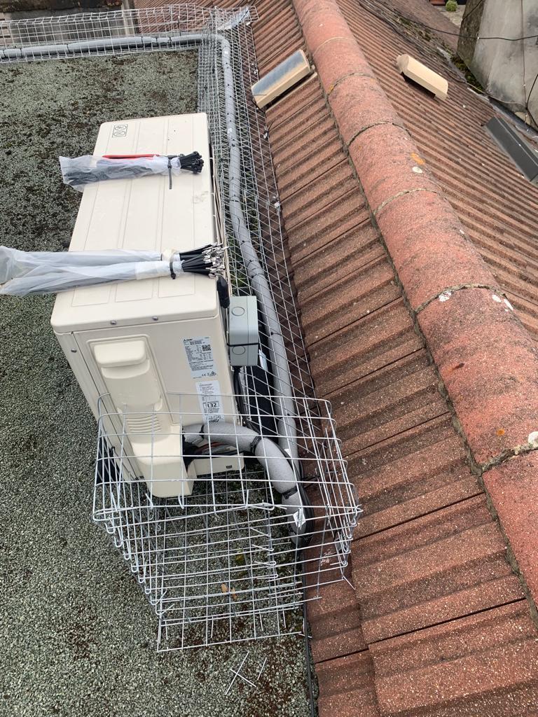 Box meshing bird control